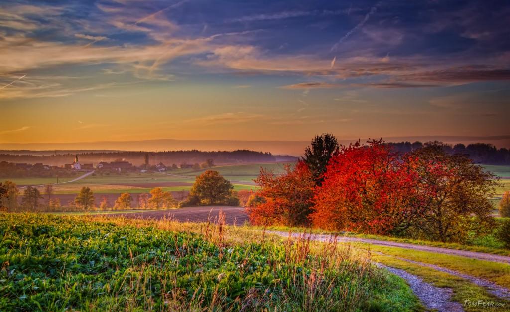 red_autumn